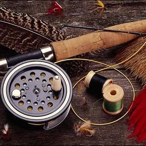 Охотничьи и рыболовные магазины Сходни