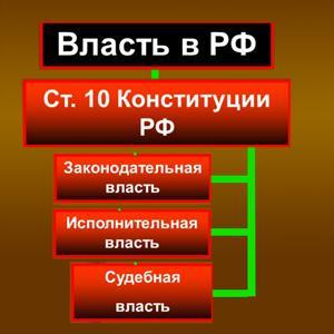 Органы власти Сходни